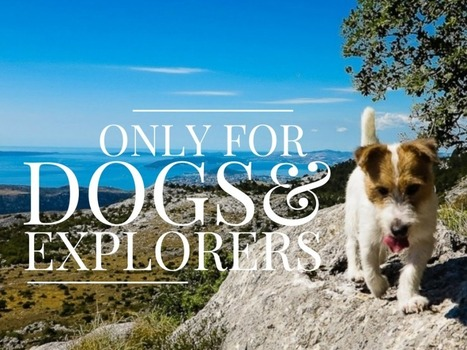 For dogs and explorers only | Travel Croatia Like a Local | Scoop.it