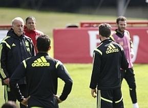 Del Bosque - Cesc Fàbregas tiff - MARCA.com | Spain World Cup | Scoop.it