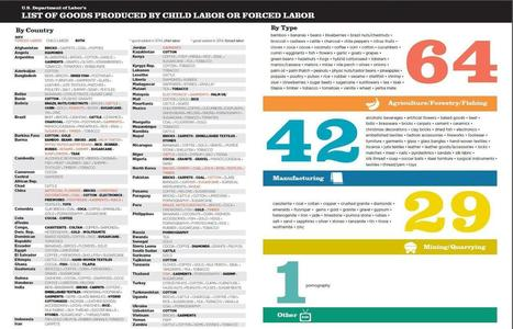 List of Goods Produced by Child Labor or Forced Labor | The Child Labor ToolBox | Scoop.it