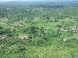 Côte d'Ivoire : Des étudiants s'engagent dans la lutte contre la désertification - Afriquinfos   Je, tu, il... nous !   Scoop.it