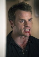 Watch True Blood Online for Free - Radioactive - S06E10 - 6x10 - SolarMovie   popular tv shows   Scoop.it