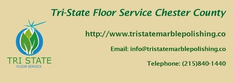 Shower Glass Door Cleaning in Chester County | Tri State Floor Service | Scoop.it