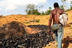 Palm oil industry accused of land grabs in Liberia | Africa and the new imperialists - same as the old imperialists. | Scoop.it