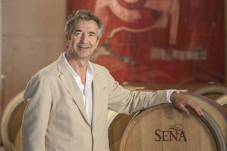 Eduardo Chadwick: Raising the bar for Chilean #wine | Vitabella Wine Daily Gossip | Scoop.it