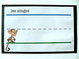 Madame Belle Feuille: Imprimer sur des lignes - un support visuel | Primary French Immersion - Grade 1 | Scoop.it