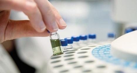 Europole Mer sort un rapport sur les biotechs marines dans le Grand Ouest - | Les algues en Bretagne | Scoop.it