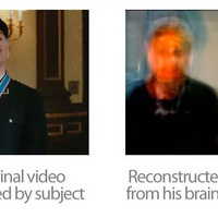 Scientists Reconstruct Brains' Visions Into Digital Video In Historic Experiment | Psychology and Brain News | Scoop.it