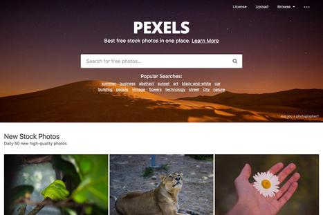 Pexels: aqui encontras fotos e vídeos para usares gratuitamente nos teus projectos | Serious Play | Scoop.it