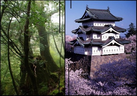 Le Japon sous toutes ses formes | Otaku Attitude | Scoop.it