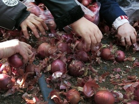Dix Grecs racontent leur vie de nouveaux pauvres   Occupy Belgium   Scoop.it
