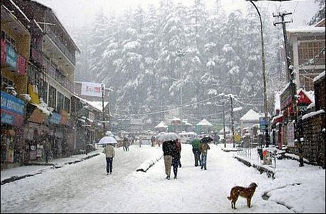 Holiday in Manali | Cheapest Manali Package | Luxury At Budget Price | Kashmir Group Package | Scoop.it