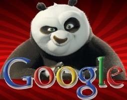 Capire algoritmi e penalizzazioni di Google - algoritmi e penalizzazioni | Seo, web marketing e amenità varie | Scoop.it