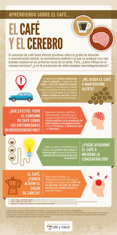 El café y el cerebro #infografia #infographic #health | Punto de encuentro TIC- Educación | Scoop.it