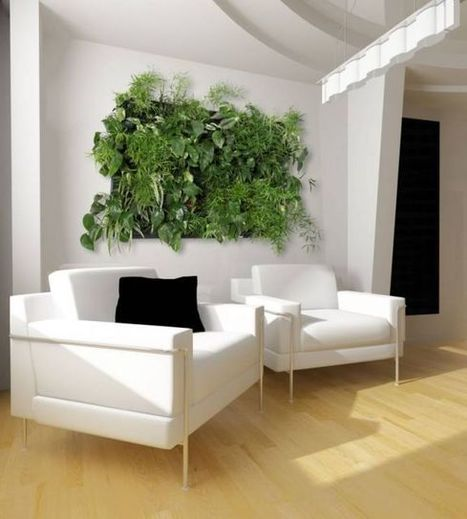 Grow a Vertical Garden Indoors - Living walls and Vertical Gardens | Agriculture,Urban Farming,Food security,Agriprenuership, Youth, Ag Journalism and  Online Ag media | Scoop.it