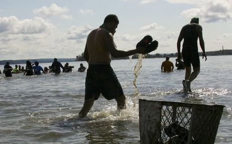 America's Most Feces-Polluted Beaches, Mapped | It's Show Prep for Radio | Scoop.it