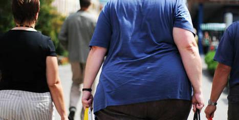 13% de la population adulte mondiale est obèse, 20% pourrait bientôt l'être - La Libre | Alimentation21 | Scoop.it