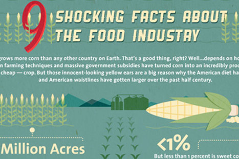 Infographic: 9 Shocking Facts About the Food Industry | Timesavers | Scoop.it