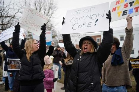 Protesters say Common Core standards should be scrapped - Newsday | Learner outcomes | Scoop.it
