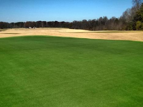 Turf pro takes to Twitter with turf paint tips - Geoponics Corporation | Turf Maintenance | Scoop.it