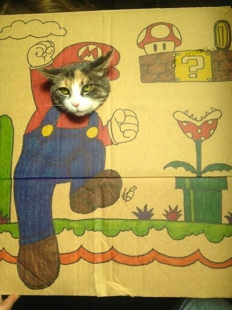 It's a meow, Mario cat! | All Geeks | Scoop.it