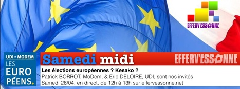 Politique >> Les élections européennes ? Kesako ? | Efferv'Essonne - La rédaction | Scoop.it