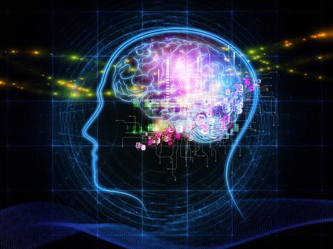 El mapa del cerebro será desvelado en la próxima década   Ciencia y Tecnologia Noticias   Scoop.it