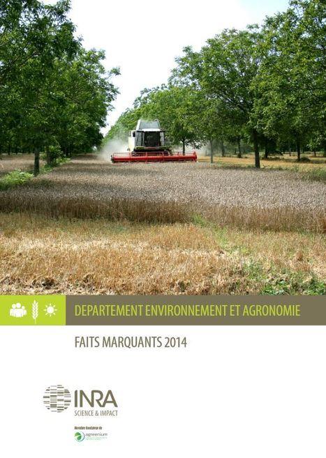 Le recueil de faits marquants 2014 du département Environnement et Agronomie - INRA | Insect Archive | Scoop.it