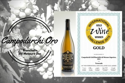 Campodarchi Oro, Bianchello del Metauro Doc Terracruda Gold Winner at the International Wine Challenge 2015 | Wines and People | Scoop.it