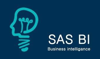 SAS BI Online Training | Technology | Scoop.it