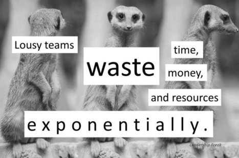 10 Practical Ways to Enhance Team Dynamics | WinMax Negotiations | Scoop.it