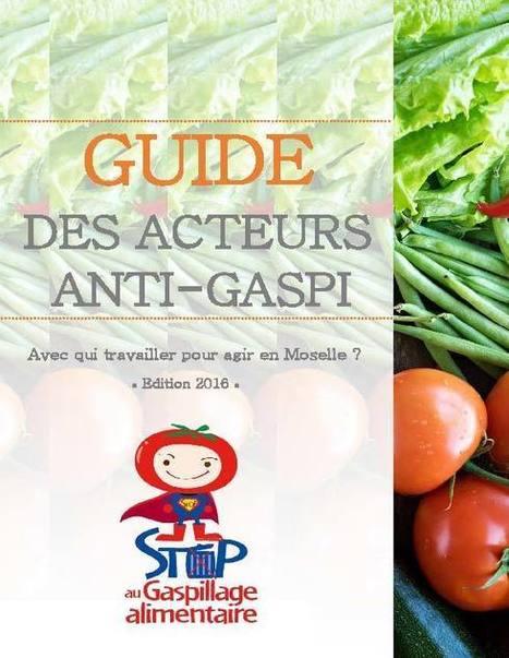 Toute l'actu / Actualité / L'ADEME en Lorraine | Veille Transition écologique | Scoop.it