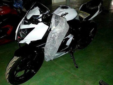 Kawasaki to Release a Single-Cylinder 250cc Sport Bike? | Digital-News on Scoop.it today | Scoop.it