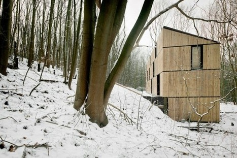 Low-Energy Bamboo House Blends into the Belgian Forest | 建築 | Scoop.it