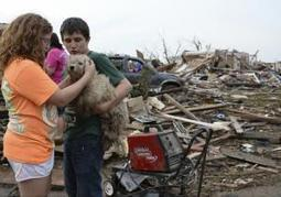 Oklahoma tornado recovery: Workers use high tech to return loved pets to owners | Pet News | Scoop.it