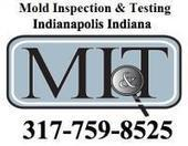 Mold Inspection Company MI&T Now Offers its Services to All of Indianapolis and the Surrounding Area | Mold removal | Scoop.it
