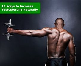 How to Increase Testosterone   How to Increase Testosterone   Scoop.it