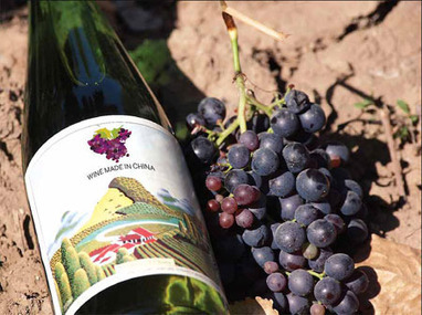 Gan Bei! | Vitabella Wine Daily Gossip | Scoop.it
