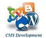 Services | web development, web designing, web hosting, e-commerce | MicroneSoft | Website Design in 2999 only | Scoop.it