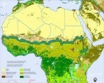 Africa Aims To Combat The Effects Of Climate Change By Greening The Desert | Sustain Our Earth | Scoop.it