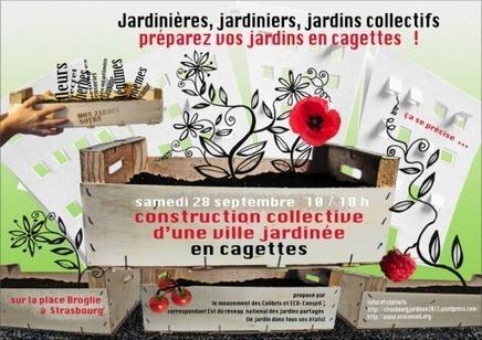 Après un échec à la Gare, les Incroyables comestibles changent de méthode - Rue89 Strasbourg | Recettes épicuriennes | Scoop.it