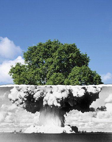 La surexploitation et l'agriculture intensive, 1ères menaces pour la biodiversité devant le réchauffement climatique | Nouveaux paradigmes | Scoop.it