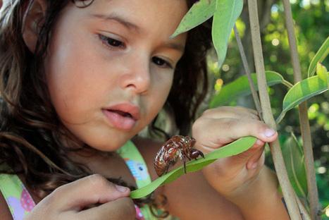 Interview With Love Thy Nature Director, Sylvie Rokab   Gardening   Scoop.it