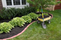 C & M Lawn Service provides affordable lawn care services.   C & M Lawn Service   Scoop.it