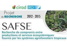 Relation entre structure du peuplement végétal et bioagresseurs dans les agroforêts à cacaoyers. Application à trois bioagresseurs du cacaoyer : la moniliose au Costa Rica, la pourriture brune et l... | l'agronomie              en thèses | Scoop.it