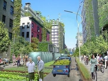 What if? New York as A Giant Urban Farm — City Farmer News | Cityfarming, Vertical Farming | Scoop.it