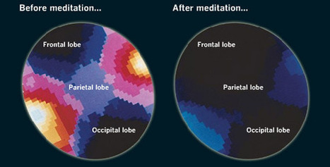 This is Your Brain on Mindfulness Meditation | Leadership and Spirituality | Scoop.it
