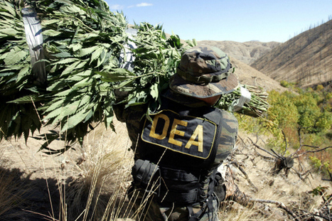 MissInfo.tv » DEA Asks FDA to Remove Marijuana From List of Schedule I Drugs | Kush Haus | Scoop.it