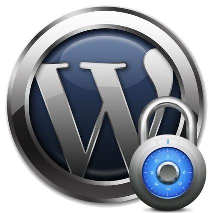Professional WordPress services provider | Supreme Innovation | supremeinv | Scoop.it