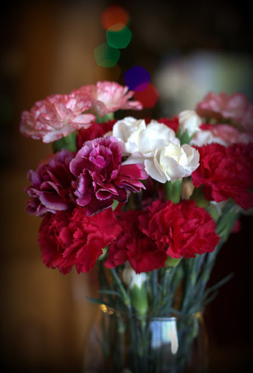 From the Soil: Brightening the Winter Blahs with Cut Flowers   Annie Haven   Haven Brand   Scoop.it
