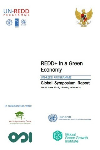 UN-REDD Releases Symposium Report on REDD+ in the Green Economy - Forests Policy & Practice | Forests, Climate Change, REDD+, Food Security | Scoop.it